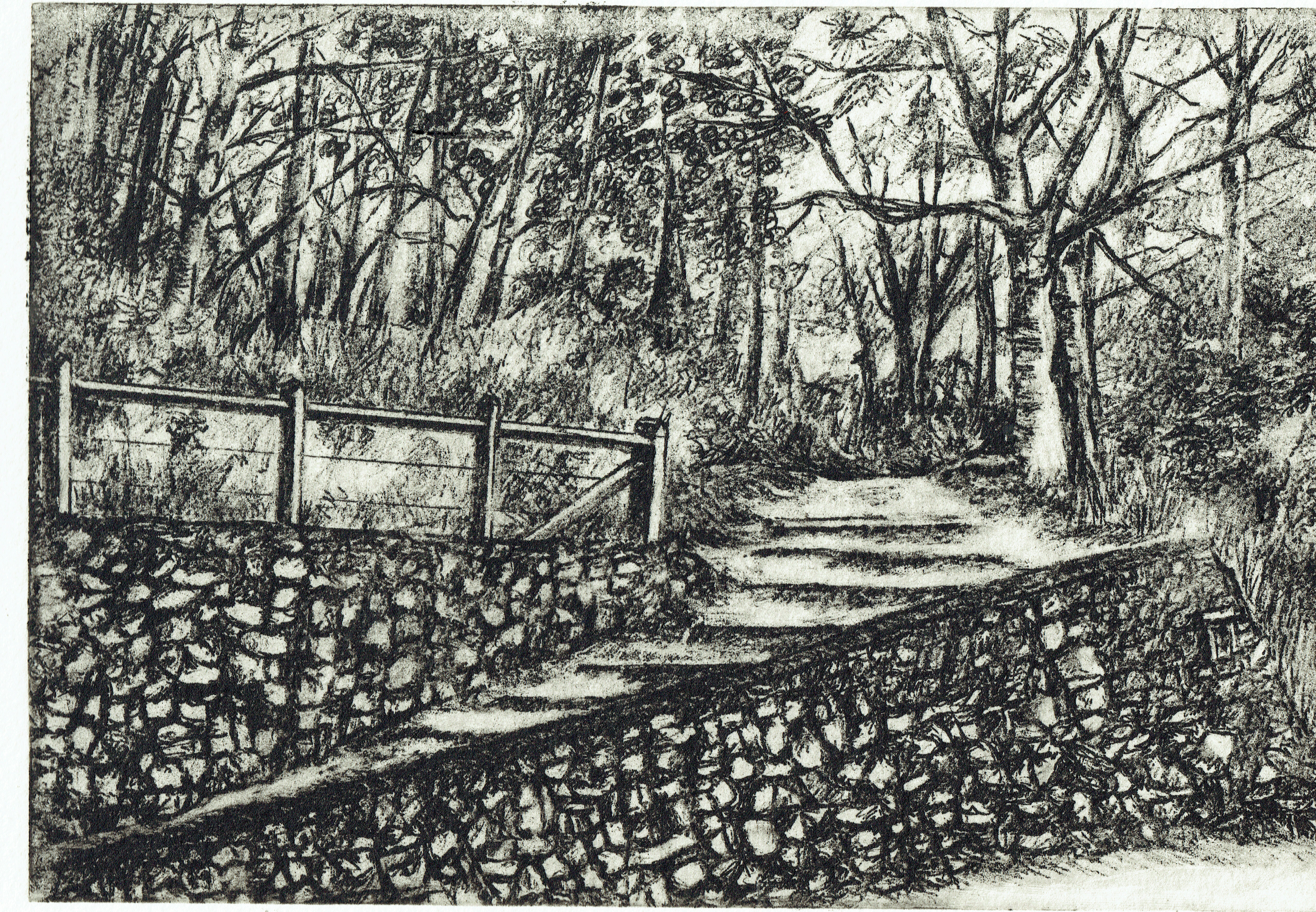 Julie Bignell Walking Trail-IntaglioOnPaper-33x26cm