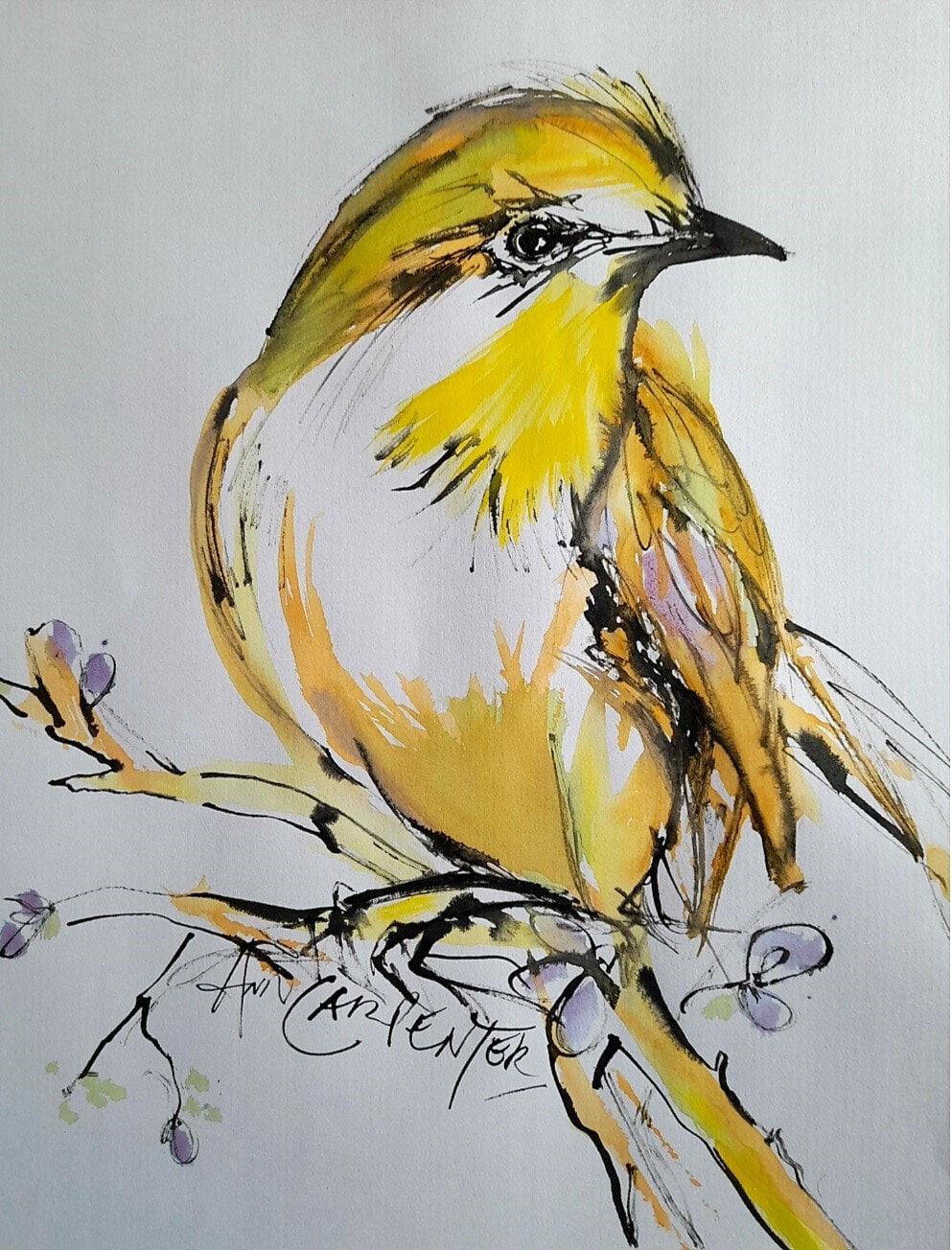 AnnCarpenter-SALA-Fleeting Perch-Ink+watercolourOnPaper-53x73cmFramed